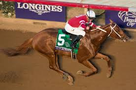 2017 Breeders Cup Charts Arrogate Goes Top Of The World Once More As Winx Team Mull