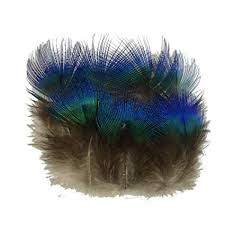 Sowder 50pcs Blue Peacock Plumage Feathers 1-3 ... - Amazon.com