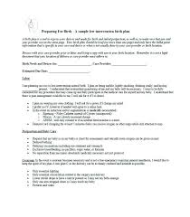 How To Plan Baby Birth Date Birth Plan Template My Baby Baby Birth Plan Template