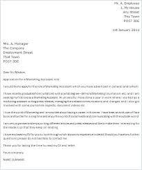 Associate Media Director Cover Letter Cover Letter For Art Director ...