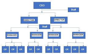 Organizational Chart Of A Company Small Construction Company Organizational Chart Www