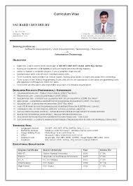 Contemporary Curriculum Vitae Formato Apa Festooning Examples