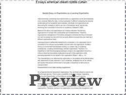 tortilla curtain analysis org tc boyle tortilla curtain analysis org
