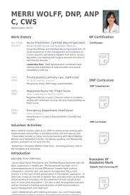 nurse practitioner, certified wound specialist Resume Example