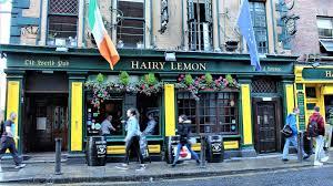 The hairy lemon pub dublin
