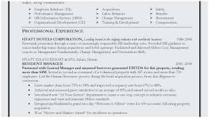 Sample Summary Statement Resume Resume Sample Summary Statement Terrific Resume Summary Examples For
