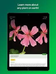 Plantsnap Pro Identify Plants