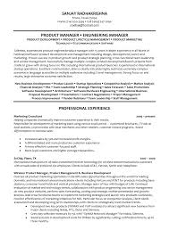 Resume Templates Transformation Consultant Sample Process