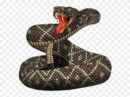 rattlesnake clipart. Contemporary Rattlesnake Rattlesnake Clipart Snake Mask  Png For E