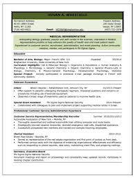 Resume Writing Service Bag The Web
