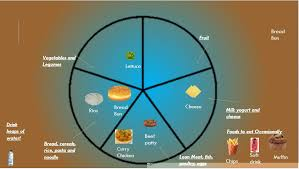 Australian Guide To Healthy Eating Pie Diagram Of My Clients
