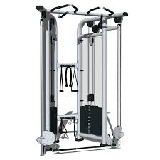 dual pulley life fitness