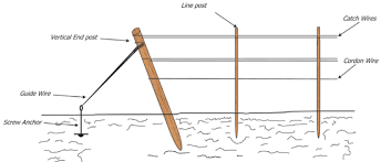Vine Spacing Chart Nmsu Trellis End Post Assembly Designs For Vineyards