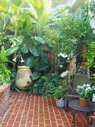 how to make your garden lush the
