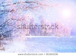 beautiful background images nature winter. Exellent Background Beautiful Winter Landscape Scene Background Wit Snow Covered Trees And Ice  River Beauty Sunny Winter And Background Images Nature F