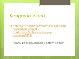 super croc video supersize crocs full episode ppt  19 kangaroo