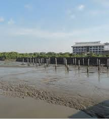 disaster risk environmental degradation net the removal of mangrove ecosystems increases vulnerability of coastal communities