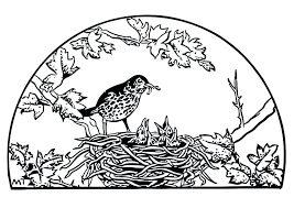Bird Nest Coloring Page Coloring Page Nest Free Printable Bird Nest