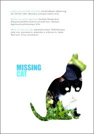 Lost Pet Flyer Maker Stunning Puppies Lost Cat Flyer Template Word Maker For Sale Free Missing