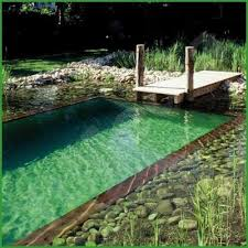 natural looking in ground pools. Fine Looking Inside Natural Looking In Ground Pools