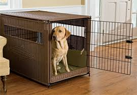 luxury dog crates furniture. Durable Crate Luxury Dog Crates Furniture E