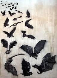 bats bat flight of bats animal painting by thierry bisch pets wildlife art