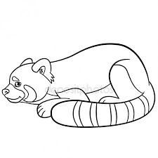 Kleurplaten Panda En Konijn Ausmalbild Schwarz Weisses Kaninchen