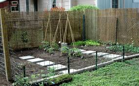 Small Picture Backyard vegetable garden design