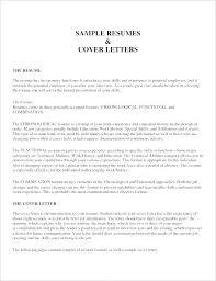 Best Professional Resume Format | Nfcnbarroom.com