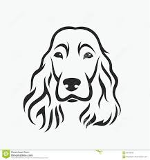 Cocker Spaniel Puppy Wiring Diagram Database