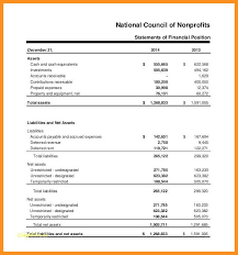 9-10 Non Profit Balance Sheet Template | Knowinglost.com