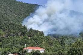 İzmir'in iki ilçesinde orman yangını