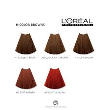 Loreal Excellence Hicolor Browns For Dark Hair Only H1 Coolest Brown