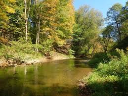 Fly Fishing Rivertop Rambles