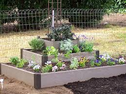 Small Picture Raised Bed Gardening HGTV