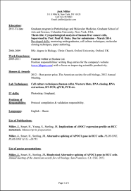 Curriculum Vitae English Example Hobbies Augustais