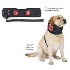 stop dog from licking wound. Interesting Dog Alternative To Cones And Collars Prevent Licking Of Wounds Etc In Stop Dog From Licking Wound