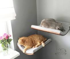 Oval shelfcat wall bed cat shelves cat furniture by cosyanddozy