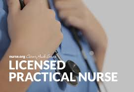 Licensed Practical Nurse Guide Nurse Org