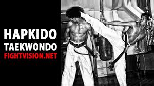 Hapkido Fight Vision