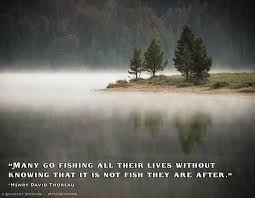 Henry Thoreau Quotes Impressive Fly Fishing Quotes 48 Henry David Thoreau Best Fly Fishing In