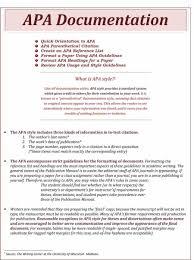 Endnotes Essay Essay Example