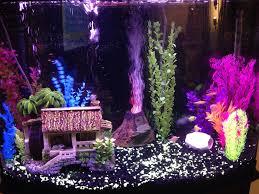 fish tank lighting ideas. my new glo fish aquarium tank lighting ideas