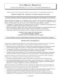 Sample Executive Director Resume Resume Example Collection
