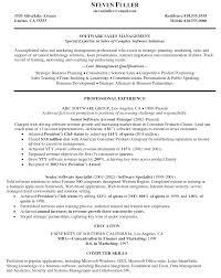 international business resume resume finance it resume sample area s manager resumes s management resume example smlf international business resume examples international curriculum vitae
