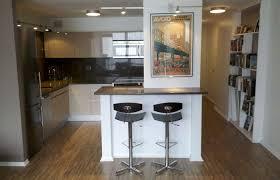Condo Kitchen Remodel Interior Best Design Ideas