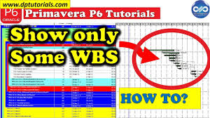 How To Show Only Some Wbs In The Gantt Chart In Primavera P6 Free Primavera P6 Online Tutorials