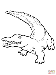 Small Picture Realistic Crocodile coloring page Free Printable Coloring Pages