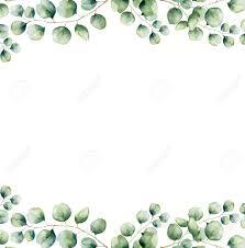 Watercolor Green Floral Frame Card With Silver Dollar Eucalyptus