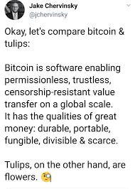 Bitcoin Vs Tulips Bitcoin